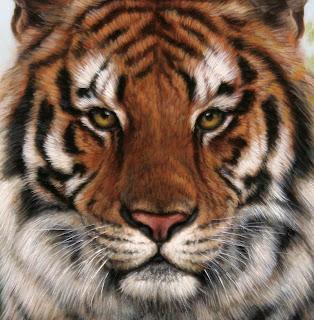 lisa ober artist tiger face