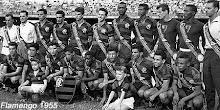 Famengo 1955
