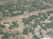 Vista aérea de Pemba