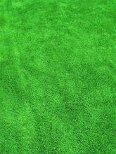 美しい芝生の絨毯