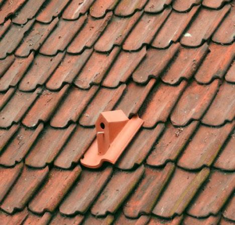 the roof above my head: A roof tile can also be a bird house!