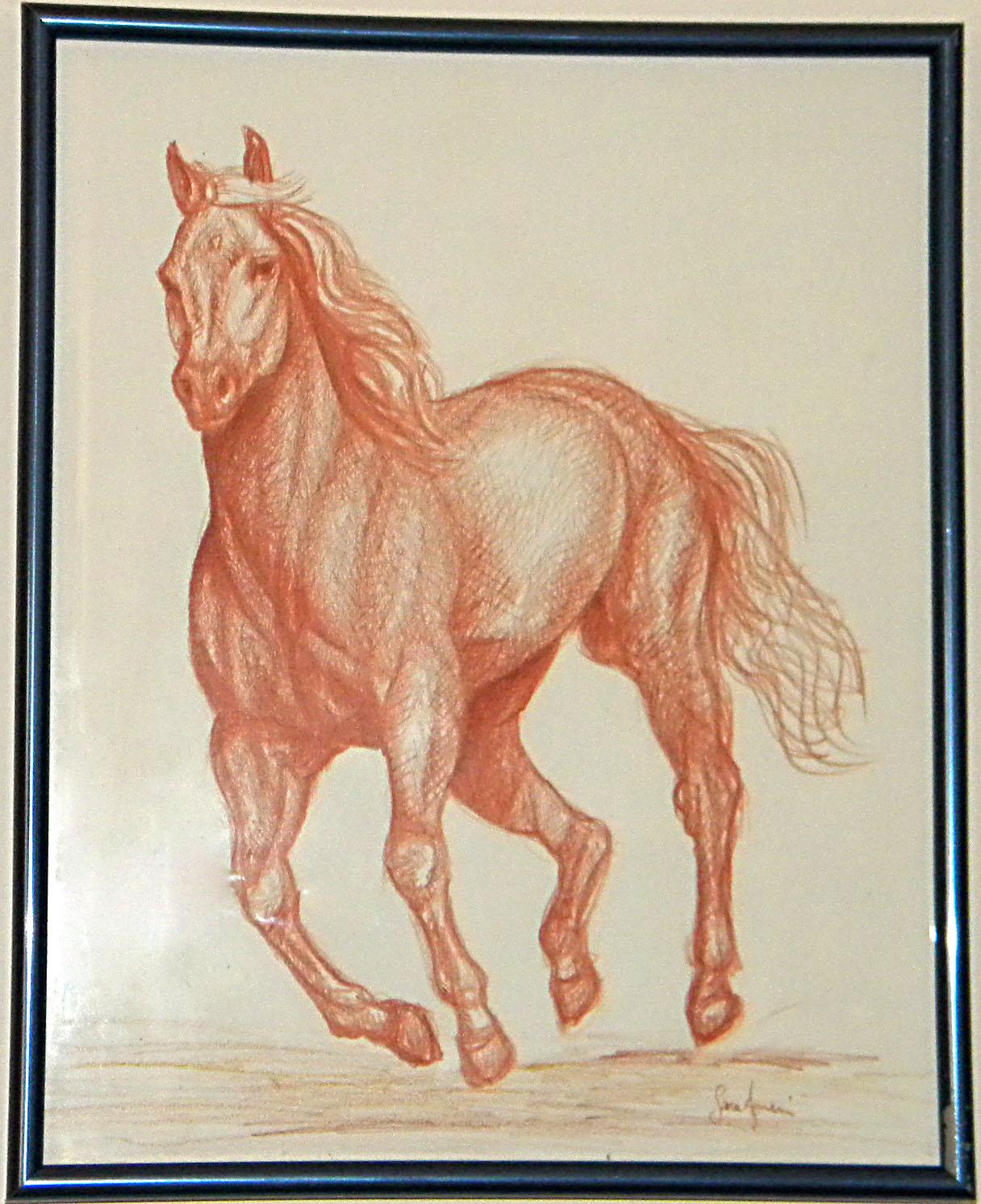 Dipinti disegni copie e rivisitazioni cavallo al galoppo for Disegni di cavalli a matita