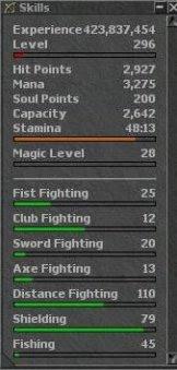 Primeiro paladino a atingir o magic level 28 2lizlzn
