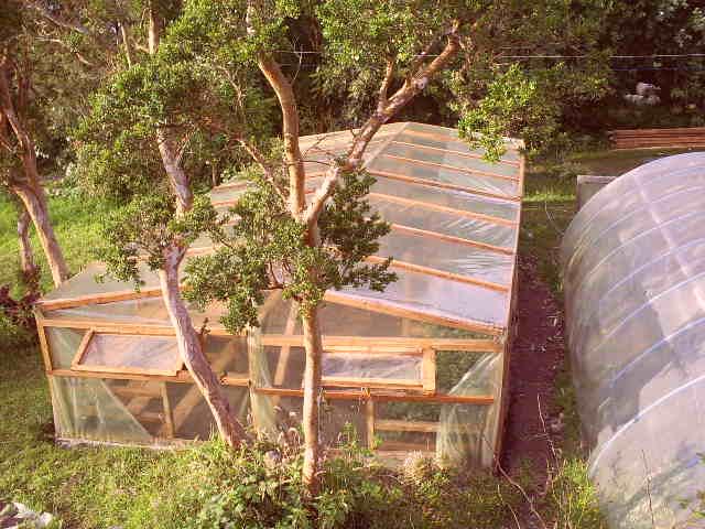 Vista aerea Viveros Plantas Madres
