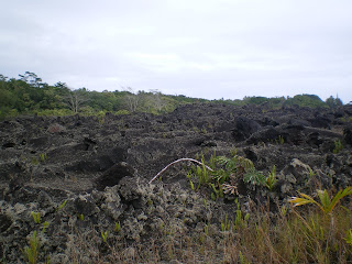Living on lava in Hawaii