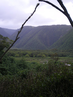 the dramatic Pulolu Valley
