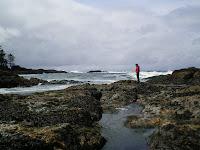 Ucluelet coastline