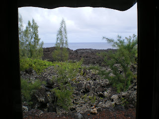 the view of the ocean across lava fields in Pahoa