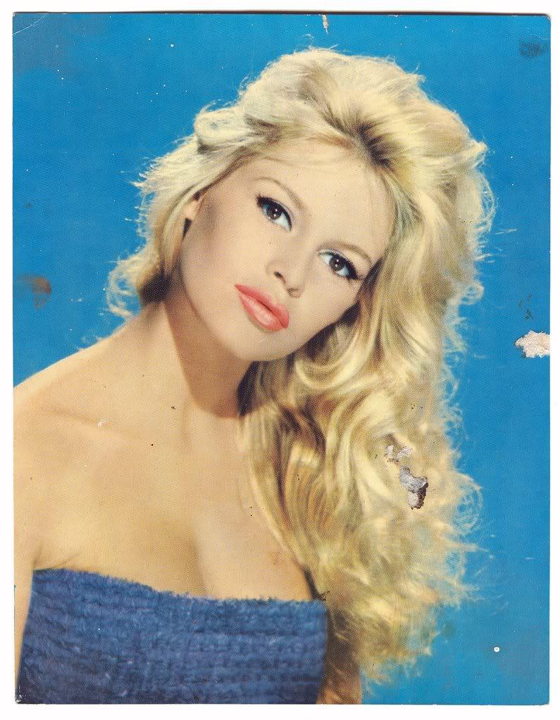 dac53952f47a1 HSAMAblog  Brigitte Bardot