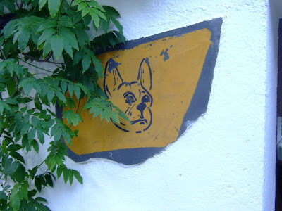 Bulli Dogs