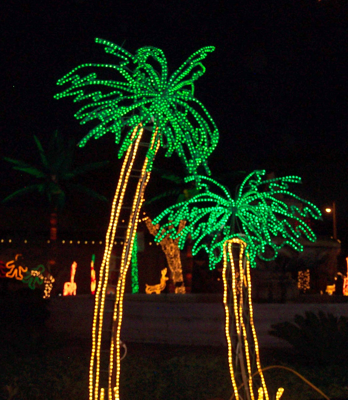 Christmas Lights Palm Trees: Happy Trails: Christmas Lights In Hidalgo, TX