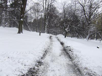 Śnieg w Parku Decjusza obok Willi Decjusza