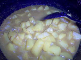 Dosti Roti and Curry Aloo