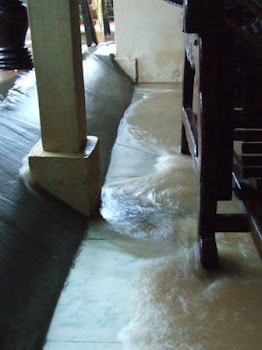 Water Rushing into the House