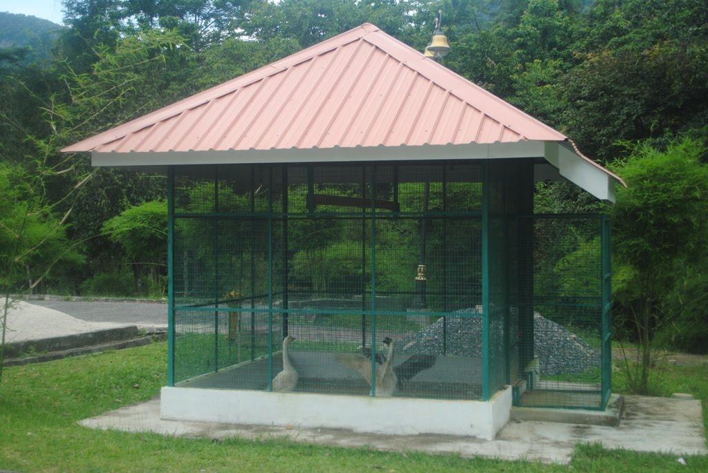My Peacock Farm: Model Sangkar Burung di Taman Burung Perlis