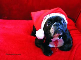 Πως να αντιμετωπίσετε το σύνδρομο των Χριστουγέννων