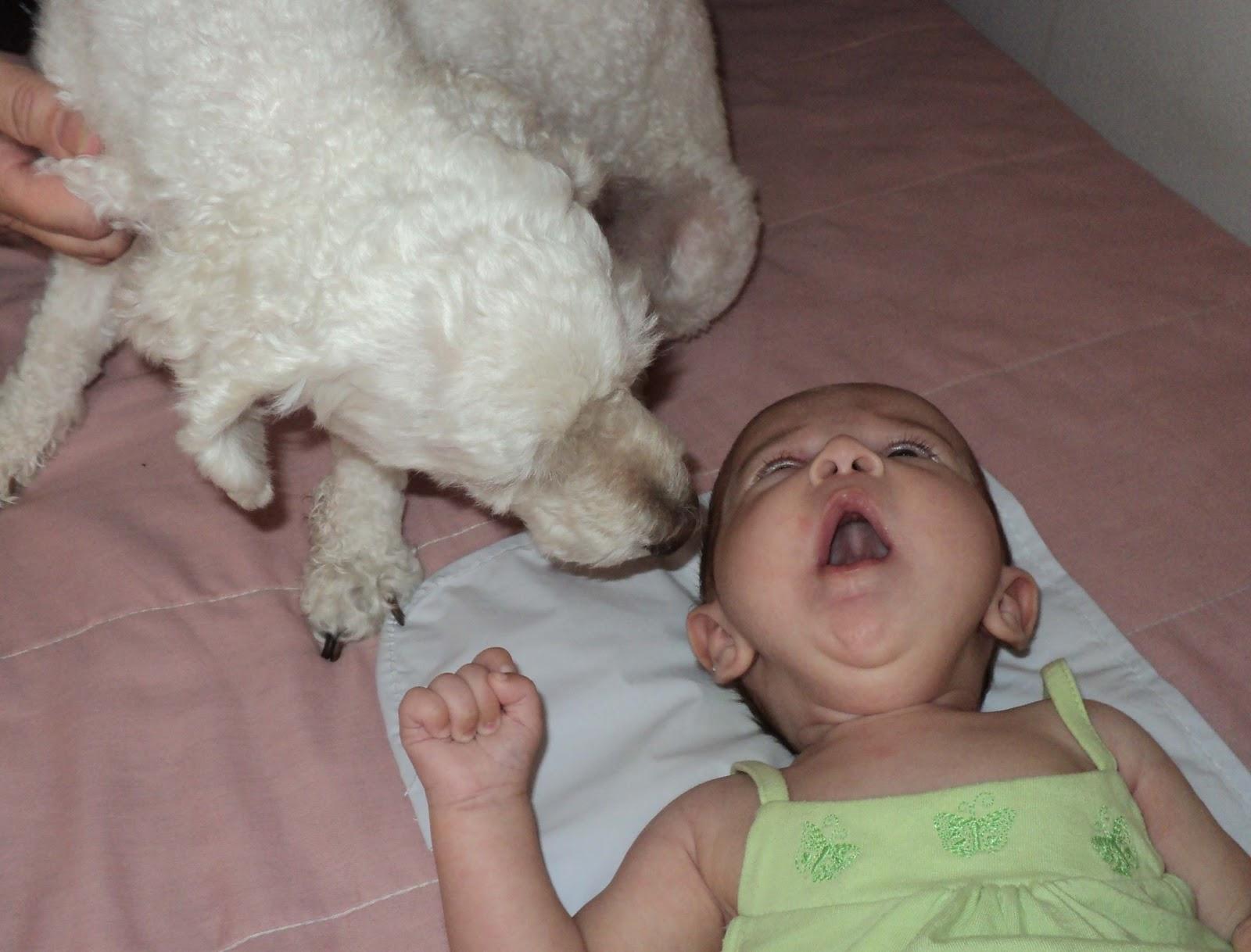 Se Existe Felicidade Perfeita Eu Não Sei Mas Perto De: Diário Da Mãe...: Janeiro 2011