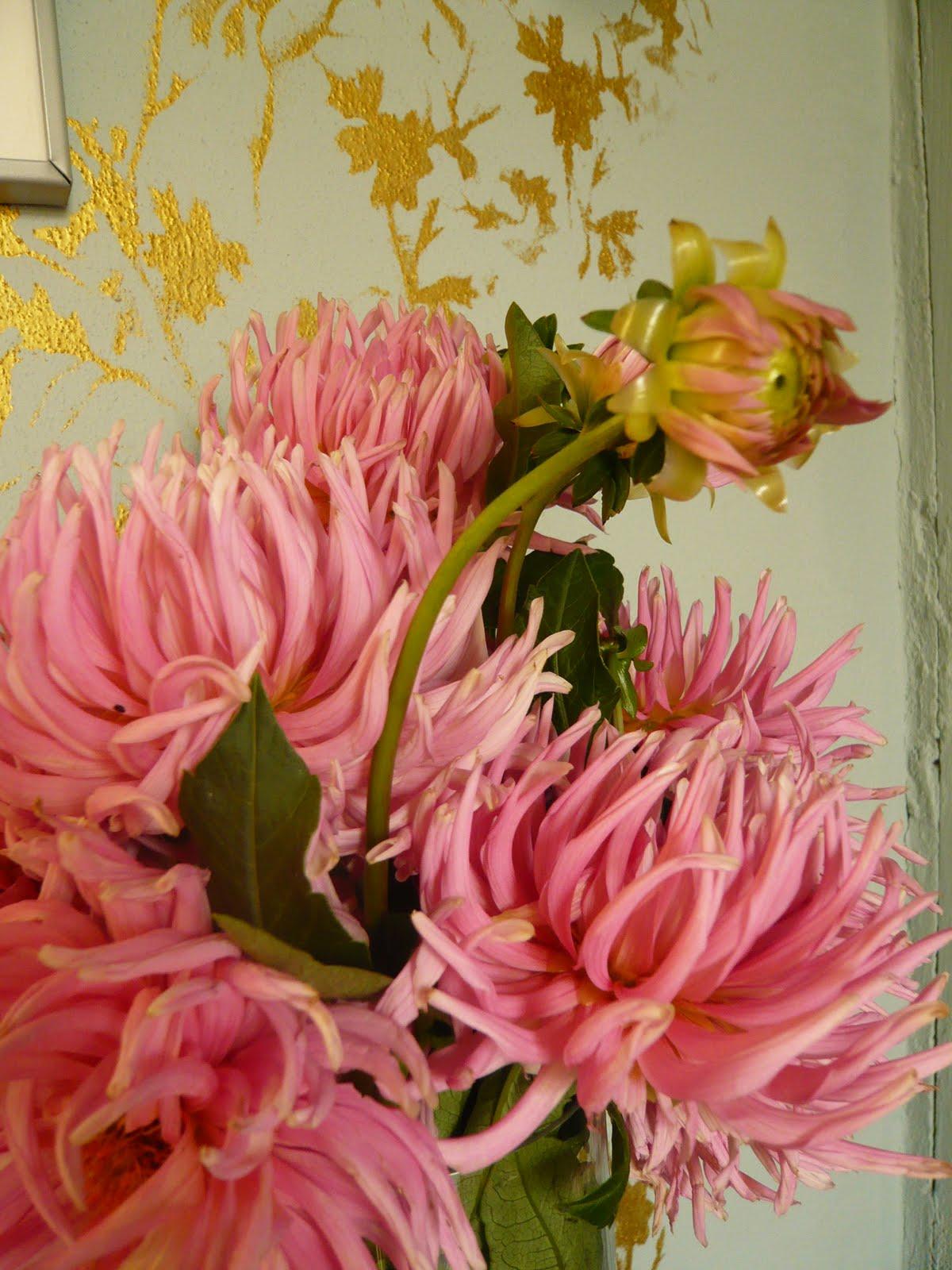 Coltivare Fiori Da Recidere coltivazione della dalia | blossom zine blog