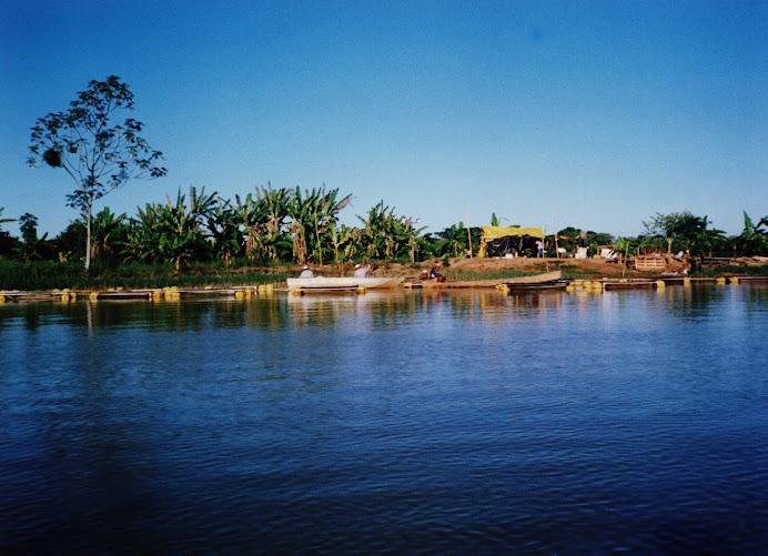 BONS TEMPOS: Projeto de Piscicultura da Ilha do Coqueiro, no Rio São Francisco, no ano de 2003.