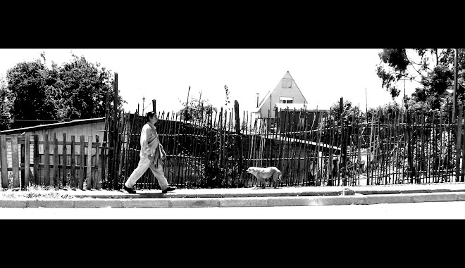 EL CAMINANTE DE LA ISLA/LE PROMENEUR DE L'ILE