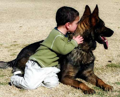 Boy Girl Kiss Hd Wallpaper Kids Fun Activities With Pets Kissing