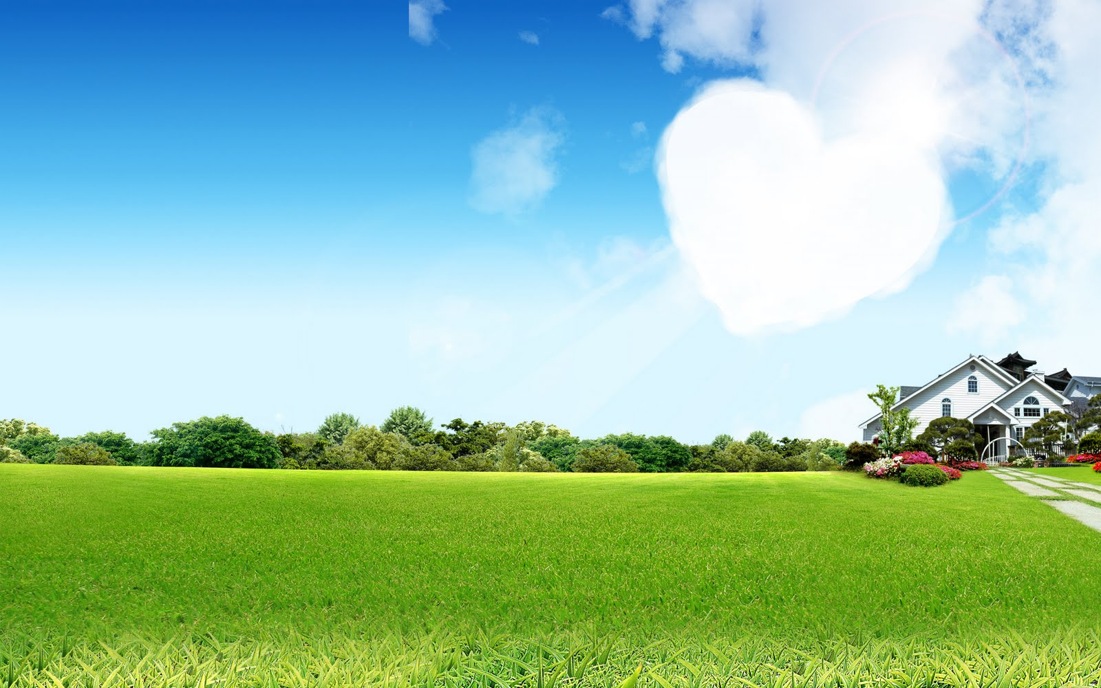 Pleasant green sky background wallpapers for New house wallpaper