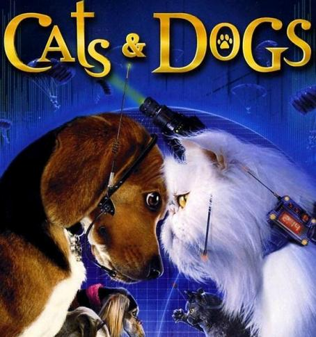 Cats And Dogs Alike Mean