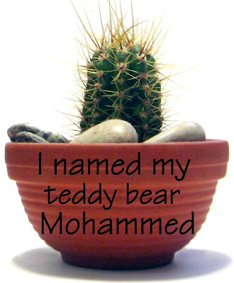 I named my teddy bear Mohammed