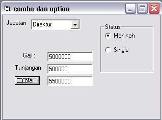 Combo dan Option vb 6