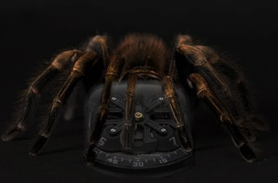 Urwerk Tarantula Crawls Onto Your Wrist and Sticks its Fangs Into Your Veins