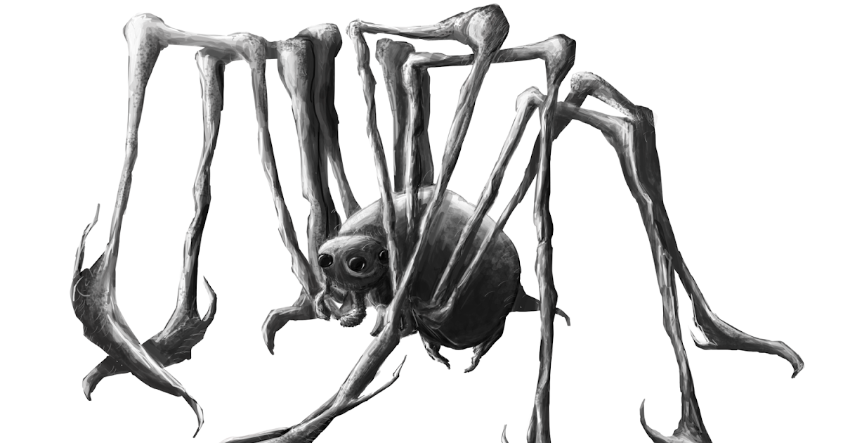 Ruben's Blogpage: 1.B.2- First Sketches of Spiders