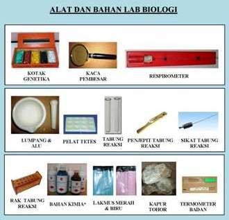 Alat Laboratorium Ipa Biologi Dak Smp 20122013 Biologi På Axipix