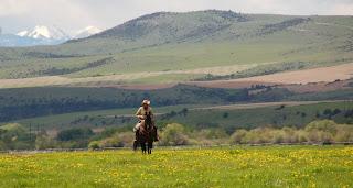 Bill on horseback