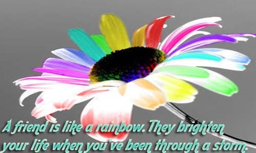 Flowers Wallpapers With Friendship Quotes Friendship Quotes Pics New Festivals And Events