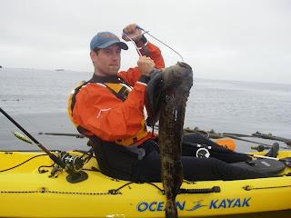 Kayak fishing with gwkc kfu saltwater kayak fishing school for Kayak fish stringer