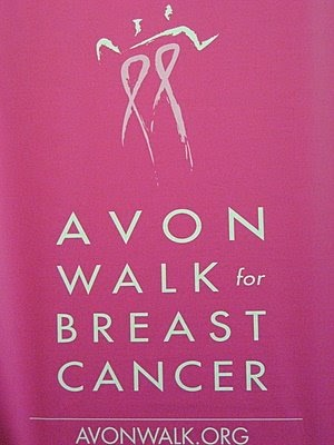 revlon breast cancer walk 2009