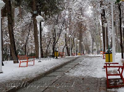 vakil-abad---mashhad-tourism-(8).jpg