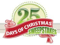 Taunton Threads 25 Days of Christmas Giveaway