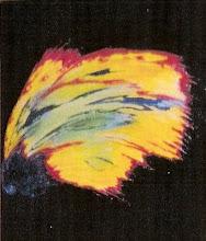 Metamorfose Astral