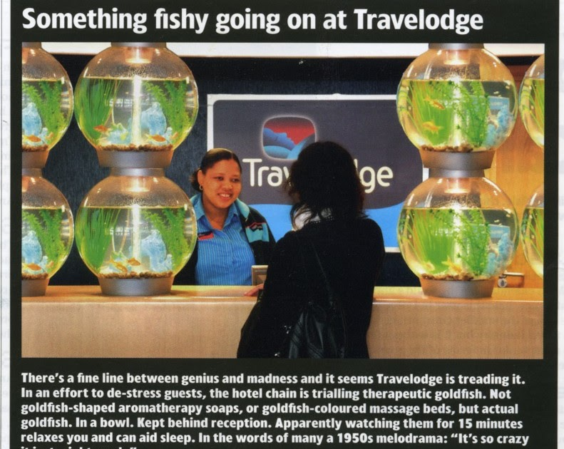 Travelodge Room Service Job Perth