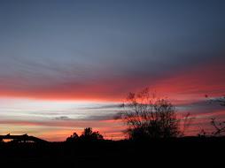 Beautiful CA Sunset!