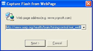 download flash player online from web