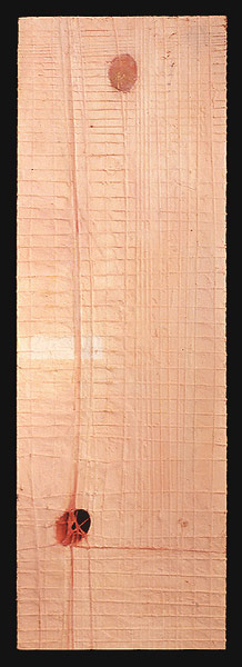 Skin/Flesh, 1999. oil & mixed media on wood. 91.5 x 28.6 cm