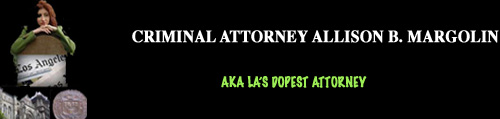 LA Criminal Attorney Allison B. Margolin