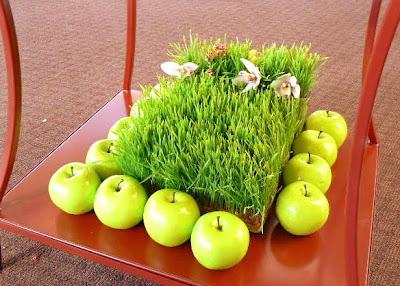 آموزش سبز سبزه نخود آموزش روش های سبز کردن سبزه عید با انواع بذرها+ عکس