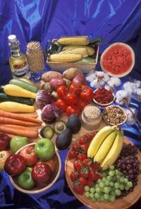 Nocivos naturales Nocivos naturales  Nocivos naturales en los alimentos