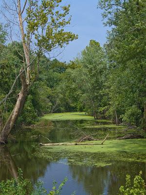 Saint John's Creek, in Washington, Franklin County, Missouri, USA