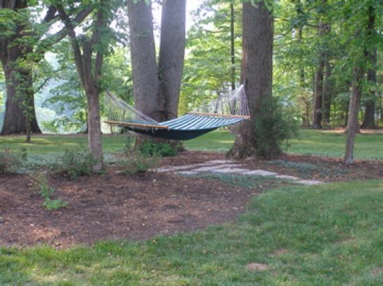 [the-hammock-in-the-garden.jpg]