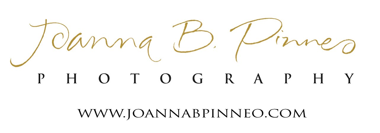 Joanna B. Pinneo Journal