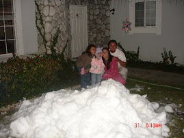 Daddy brought snow to us!